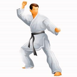 karate_icon